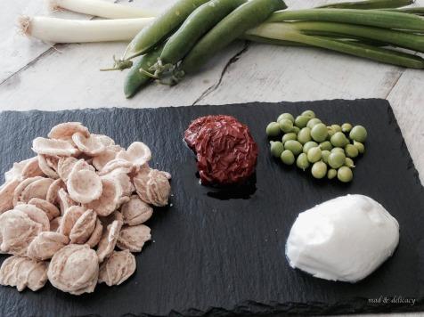 orecchiette_ingredients