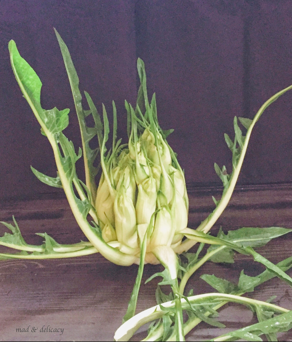 Puntarelle chicory with anchovy sauce