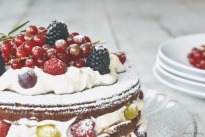 Pan di spagna - cake